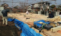 2012-12-18 11.05.09.jpg